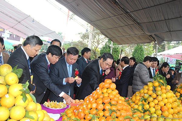 Lễ hội cây ăn quả có múi 2018 tỉnh Hòa Bình